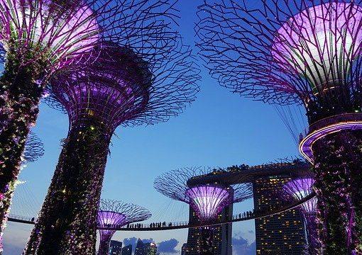 シンガポール:ハラール機関Warees、海外へ